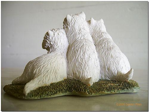 ThreeWestiesback