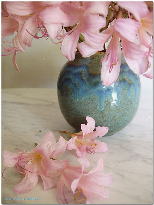 Pinknakedladies