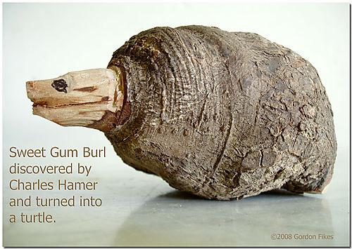 BurlTurtle
