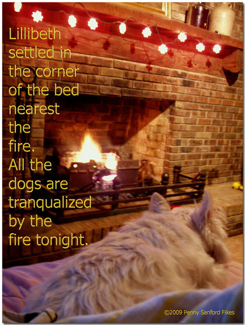 Fireplacebirthday2