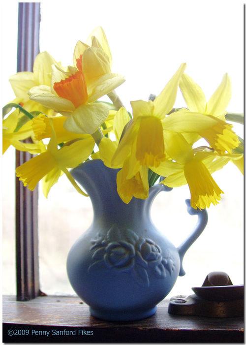 Daffodilswindow2