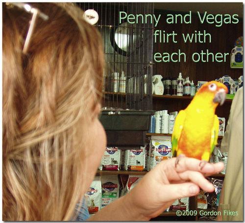 Vegas&Pennyflirt