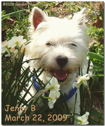 JennyB3-22-09