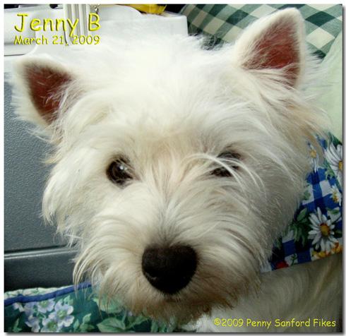 JennyB3-21-09d