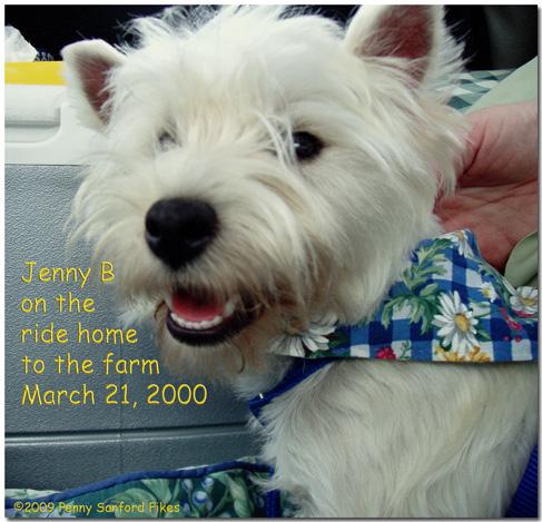 JennyB3-21-09