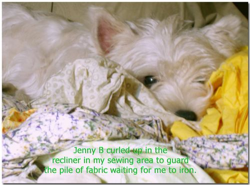 JennyBreclinerfabric