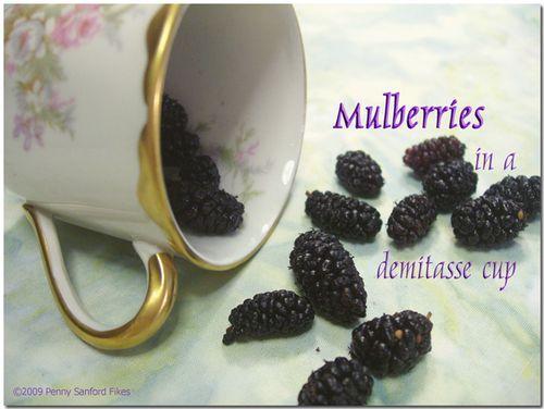 Mulberriesdemitassecup