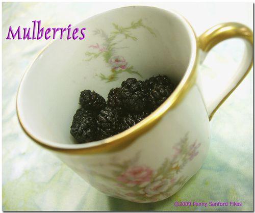 Mulberriesdemitassecup2