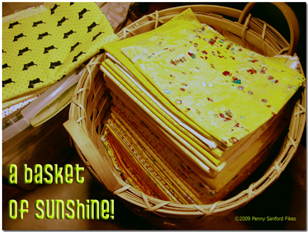 Basketsunshine