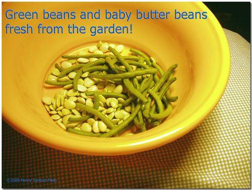 Beansbutterbeans