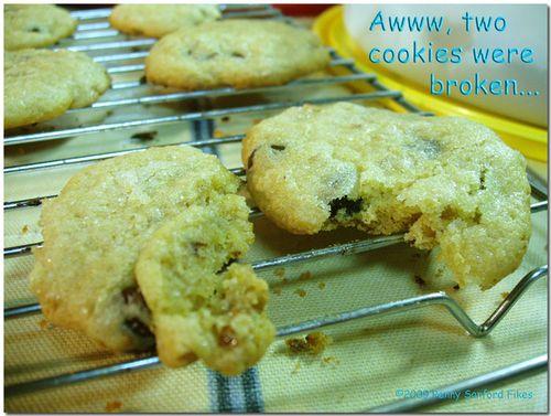 Cookiesbroken