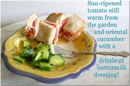 Tomatocucumbersnack