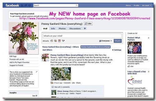 FBFanpage