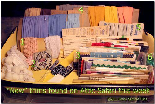 AtticSafari4