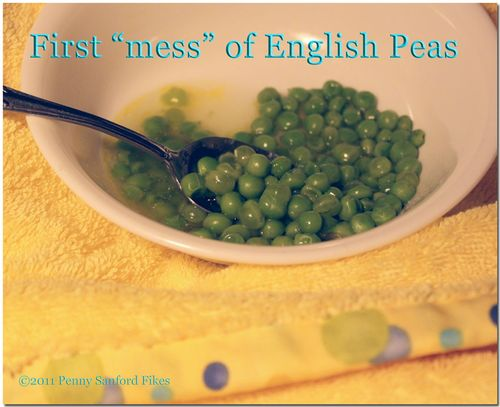 Firstenglishpeas