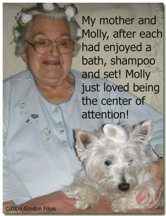 Mollyrollers