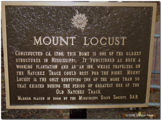 Mountlocustdarsign